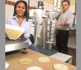 Chemical engineer Jhanel Wilson and agricultural engineer Rolando Flores mill barley kernels to be used for ethanol production and food.